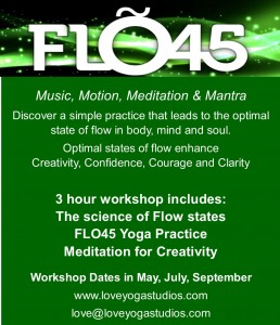 Flo45 Workshop