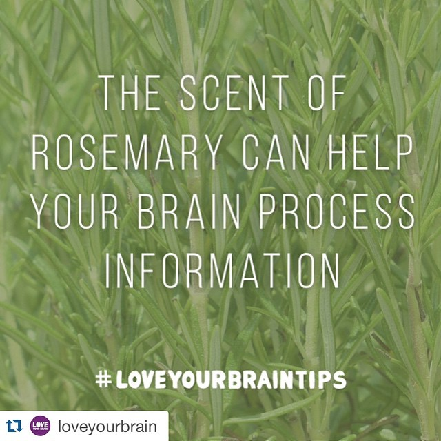 Love loveyourbrain !! Use the brainboosting power of rosemary tohellip