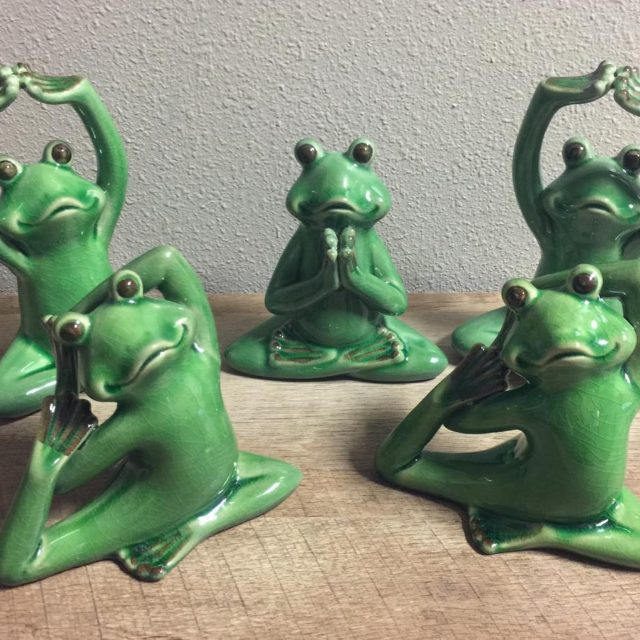 Frogs have appeared at Love strangely none of them inhellip