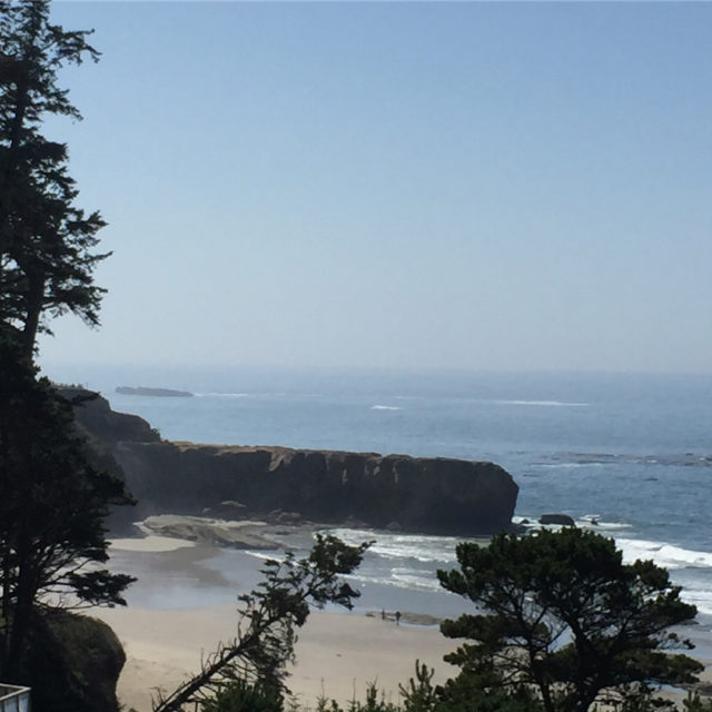 Todays view from the Inn at Otter Crest Creating ahellip